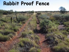 images about rabbit proof fence on Pinterest   The movie  Film     Wikipedia HOBIE   PBS SoCal Mini Doc