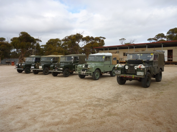 Convoy of Series Land Rovers